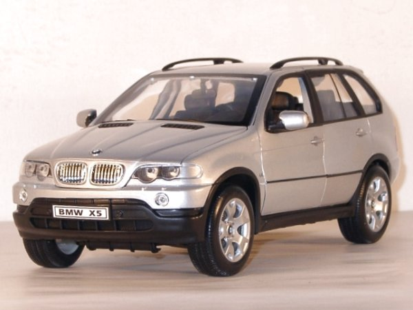 BMW X5 - silver - WELLY 1:18
